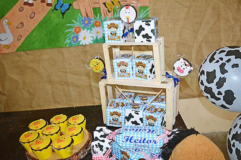 Festa Infantil Fazendinha do Heitor 9