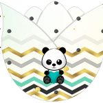 Tulipa Panda Menino