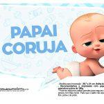 Plaquinhas divertidas Cha de bebe Poderoso Chefinho 12