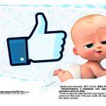 Plaquinhas divertidas Cha de bebe Poderoso Chefinho 15