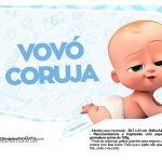 Plaquinhas divertidas Cha de bebe Poderoso Chefinho 5