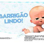Plaquinhas divertidas Cha de bebe Poderoso Chefinho 6
