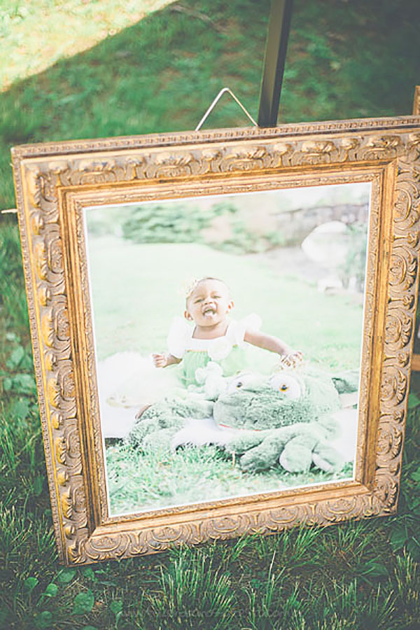 Festa Infantil Princesa e o Sapo da Amora 11