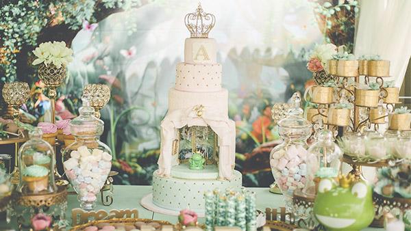 Festa Princesa e o Sapo da Amora 10