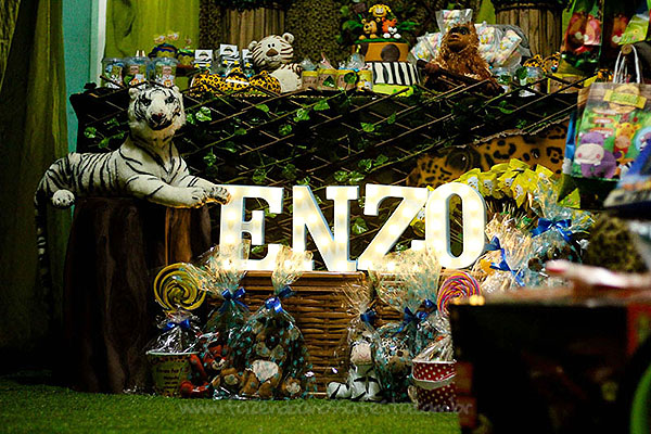 Festa Safari do Ennzo 5