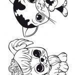 3 Livrinho para colorir Littlest Pet Shop
