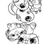6 Livrinho para colorir Littlest Pet Shop