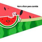 Bandeirinha Sanduiche 1 Personalizados Melancia