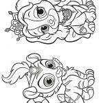 Livrinho de colorir Littlest Pet Shop 10