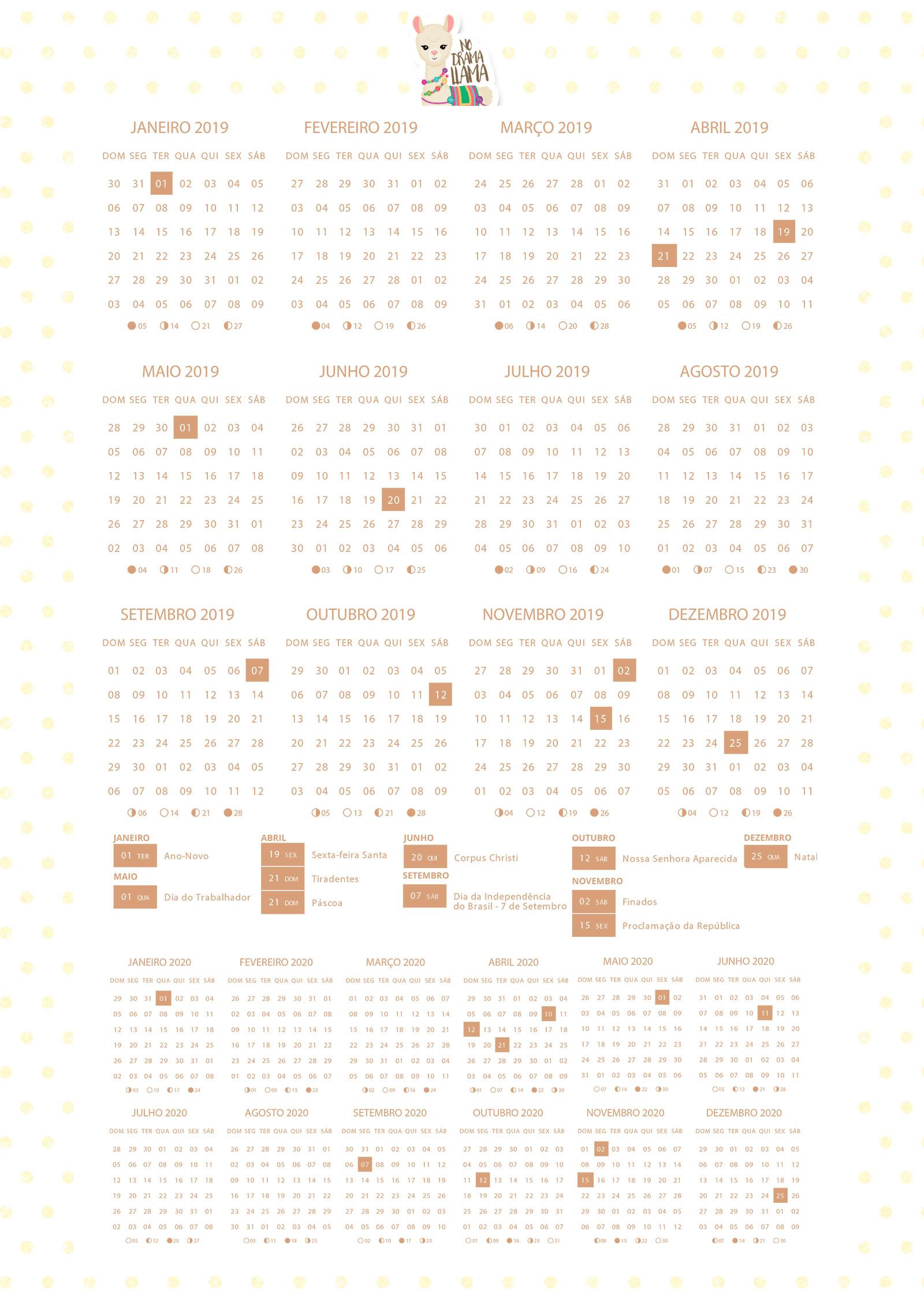 Planner 2019 Lhama Amarela Calendario 1