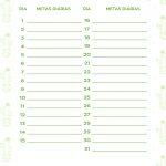 Planner Cactos 2019 metas janeiro