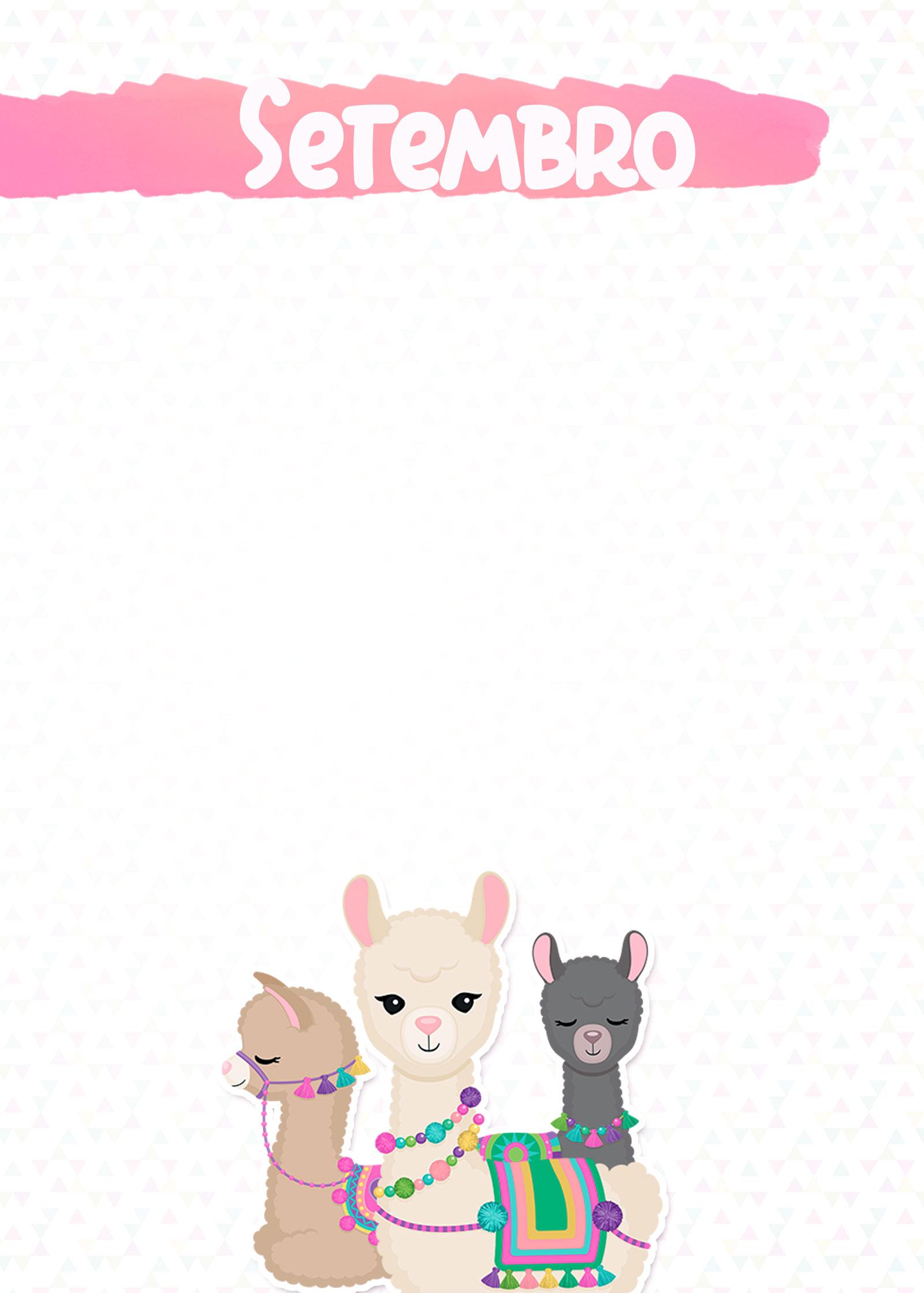 Planner Lhama Rosa 2019 capa setembro
