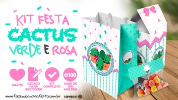 Cactos Rosa Kit Festa Gratis