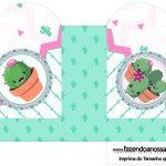 Caixa Coracao Cactos Rosa