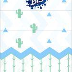 Convite Bis Duplo 3D Cactos Kit Festa