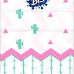 Convite Bis Duplo 3D Cactos Rosa