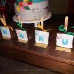 Festa infantil Moana da Emanuelly 5
