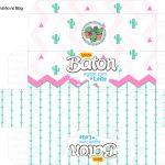 Molde Caixa Baton Cactos Rosa
