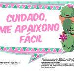 Plaquinhas para festa Cactos Rosa 9