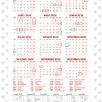 Planner 2020 Minnie Vermelha Calendario