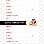 Planner Minnie Vermelha dados pessoais