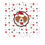 Caixa bombom beagle