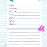 Caderno de Planejamento para Professores tema Sereia Dados Pessoais