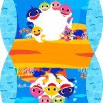 Caixa Almofada bolsinha Baby Shark