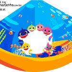 Chapeu de Festa Personalizado Kit Festa Baby Shark