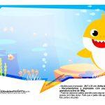 Plaquinhas Baby Shark 27
