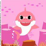 rotulo adesivo caixa de acrilico Baby Shark