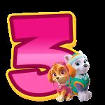 3 com personagem Numeros Patrulha Canina Rosa
