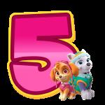 5 Numeros Patrulha Canina Rosa