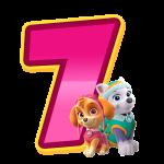 7 com personagem Numeros Patrulha Canina Rosa