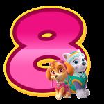 8 com personagem Numeros Patrulha Canina Rosa
