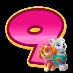 9 com personagem Numeros Patrulha Canina Rosa