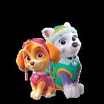 Brasao patrulha Canina Rosa