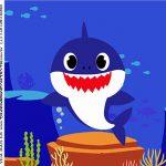Caixa Acrilico 5x5 Festa Baby Shark Rosa