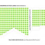 Caixa Bandeirola Xadrez Verde parte 2
