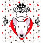 Caixa Dia das Maes bull terrier
