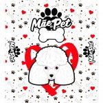 Caixa Mae de Pet poodle