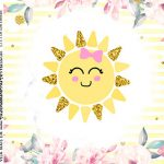 Adesivo Caixa Acrilica Festa Sunshine