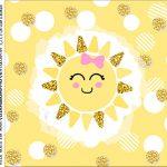 caixa de acrilico adesivo personalizado Festa Raio de Sol