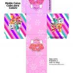 Caixa Kit Colorir Patrulha Canina para meninas