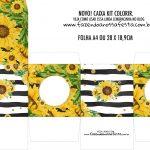 Caixa Kit Colorir Girassol