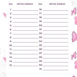 Planner Borboletas metas diarias marco