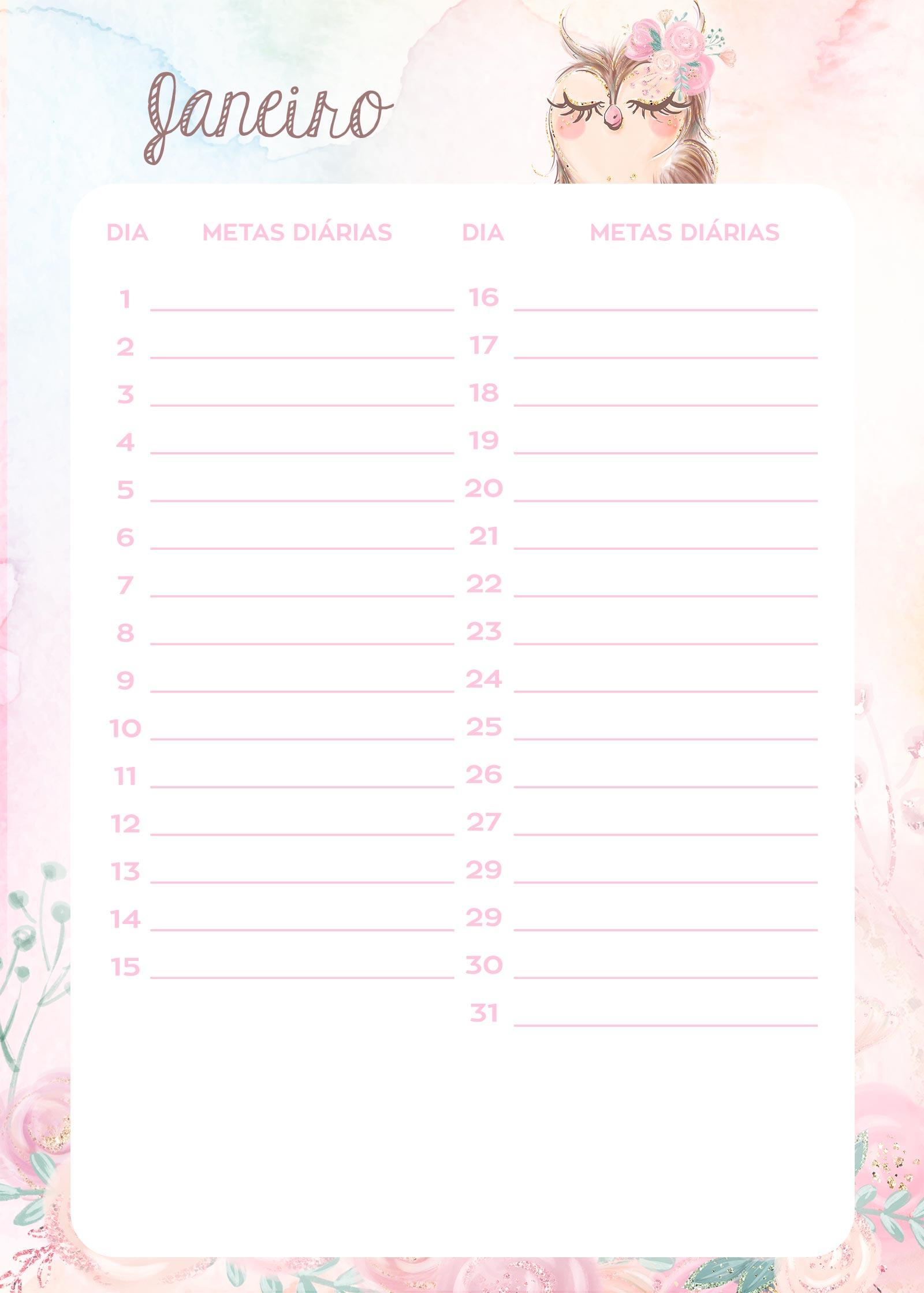 Planner Corujinha meta janeiro