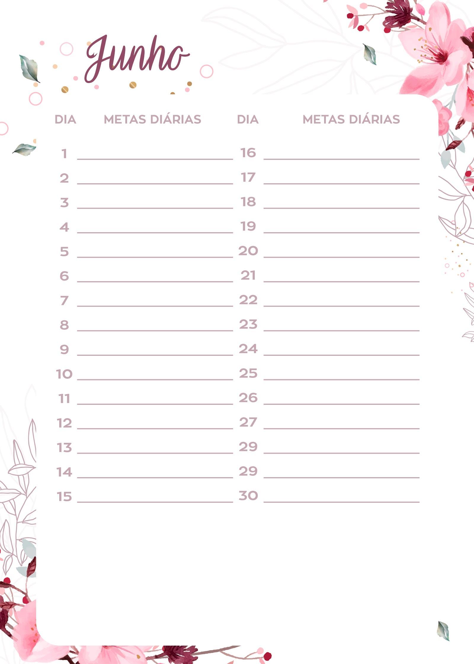 Planner Floral metas diarias junho