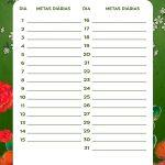 Planner Frida metas diarias marco