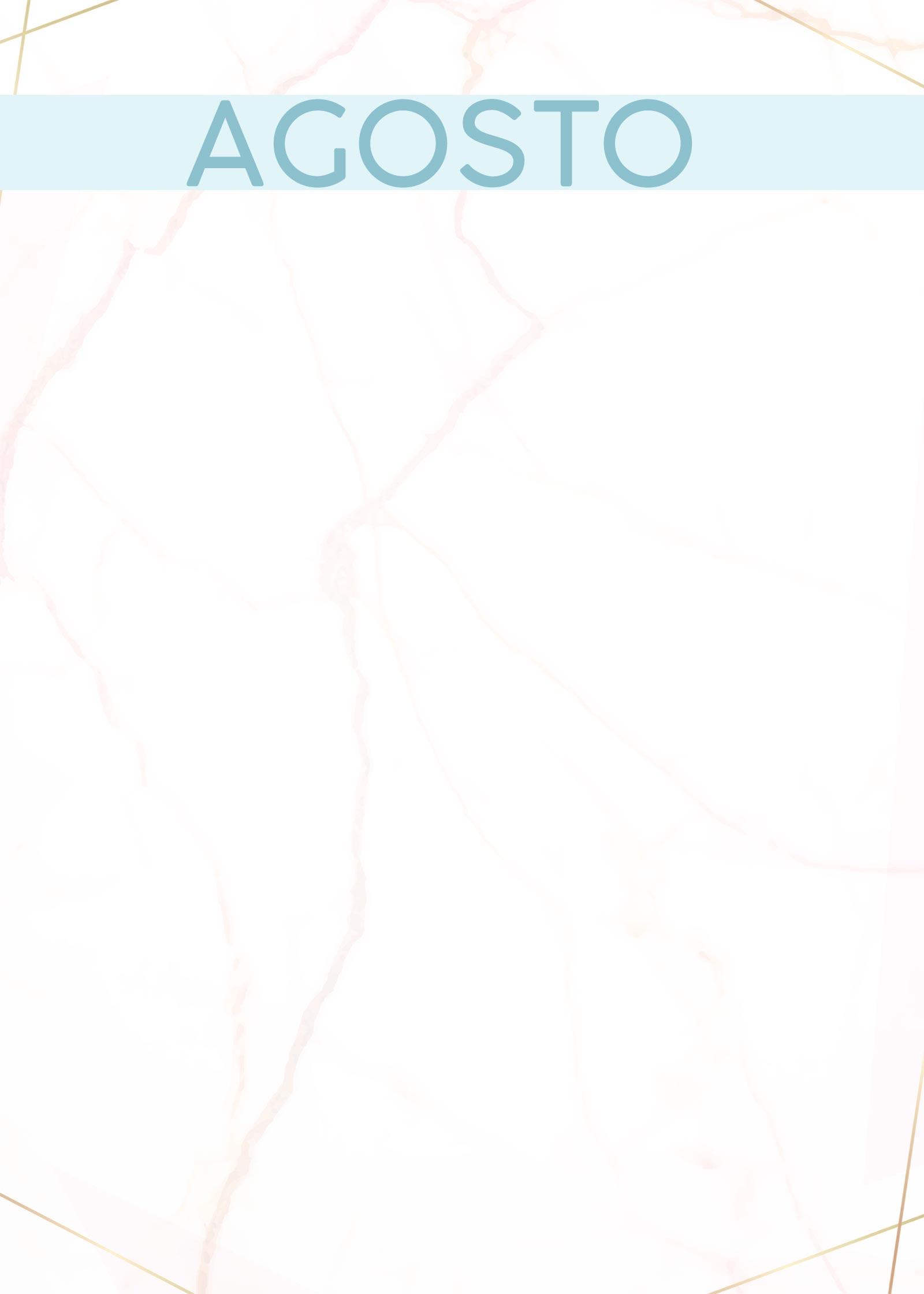Planner Marmore capa agosto